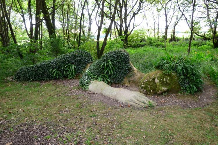 Places to go in Cornwall – Lost Gardens of Heligan