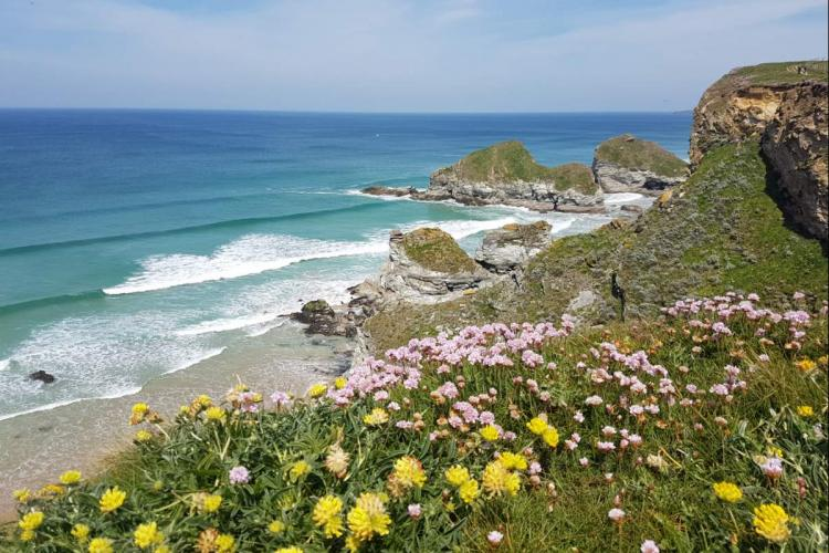 9 Things to do in Cornwall this Spring